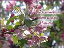 Ich wünsche Dir einen sonnigen Muttertag