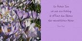 Ein froher Sinn ist wie ein Frühling. Er öffnet die Blüten der menschlichen Natur.
