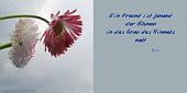 ein Freund ist jemand, der Blumen in das Grau des Himmels malt