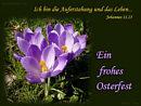 Ich bin die Auferstehung und das Leben (Johannes 11.25) ... Ein frohes Osterfest