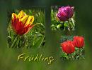Fr�hling