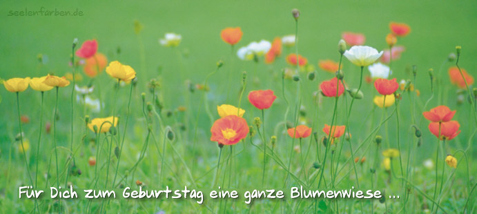 http://www.seelenfarben.de/pk2007/postkarte1952.jpg