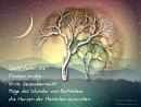sacht fallen die Flocken in die stille Dezembernacht ... Möge das Wunder von Bethlehem die Herzen der Menschen erreichen