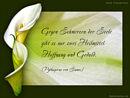 Gegen Schmerzen der Seele gibt es nur zwei Heilmittel: Hoffnung und Geduld