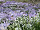 Frühlingsgedicht von Ludwig Uhland