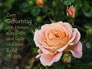 Zum Geburtstag von Herzen alles Liebe und Gute und eine Rose f�r Dich
