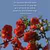 in tausend Blumen steht die Liebesschrift geprägt, wie ist die Erde schön, wenn sie den Himmel trägt