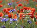 Wunderbar sind deine Werke und meine Seele erkennt das wohl