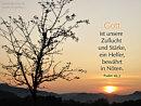 Gott ist unsere Zuflucht und Stärke, ein Helfer, bewährt in Nöten