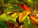farbenfrohe Herbstgrüße